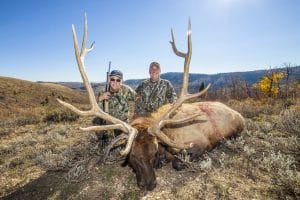 Harlyn and Gene Barnes_Bull elk